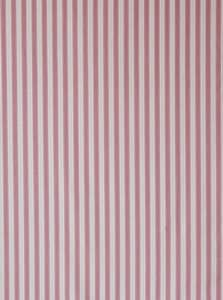 Ticking Stripe pink