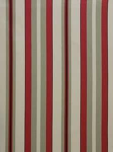 Noah Stripe Red