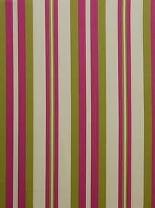 Noah Stripe Pink & Green