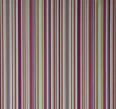 Funky Stripe - Purple