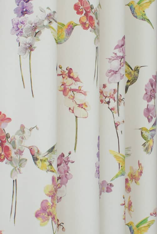 Humming Bird Blossom Roman Blinds