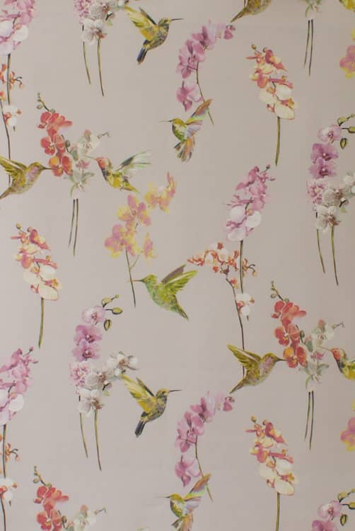 Humming Bird Rose Quartz Curtain Fabric