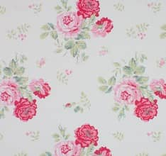 Antique Rose - Pink
